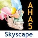 Netter's Atlas: Human Anatomy logo