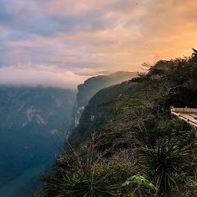 Sumidero Mexico Canyon by Sergio Moya - Landscapes Caves & Formations ( clouds, water, mountain, méxico, sunset, canyon, forest, sunrise, cañon del sumidero )