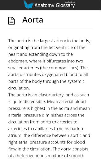 【免費教育App】Anatomy Glossary-APP點子