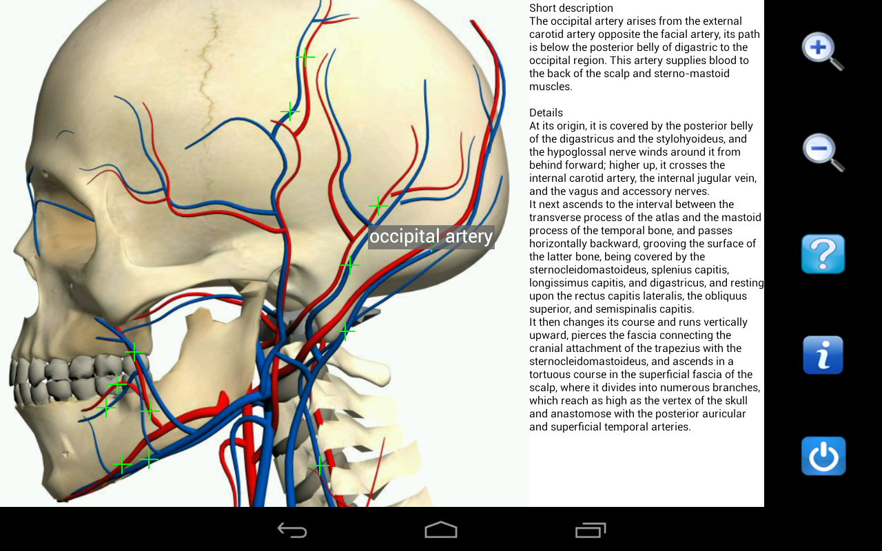 visual anatomy free android apps on play - My Blog About May2018 ...
