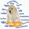 Advanced Dog Training icon