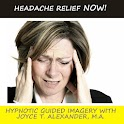 Headache Relief NOW! logo