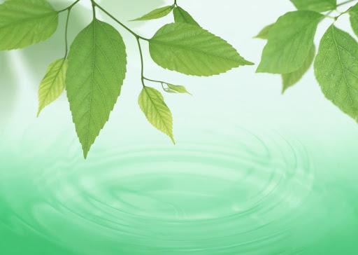 Air Greenery Wallpapers