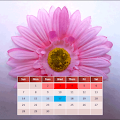 Free My Menstrual Diary APK for Windows 8