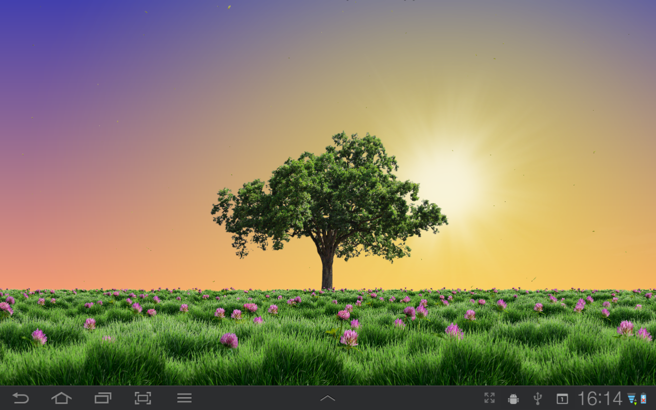 Summer trees live wallpaper android apps on google play for Tree wallpaper for walls