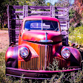 Retirement by Becca McKinnon - Transportation Automobiles ( studebaker, weeds, old truck, antique,  )