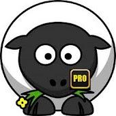 WSM Pro