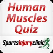 Human Muscles Quiz