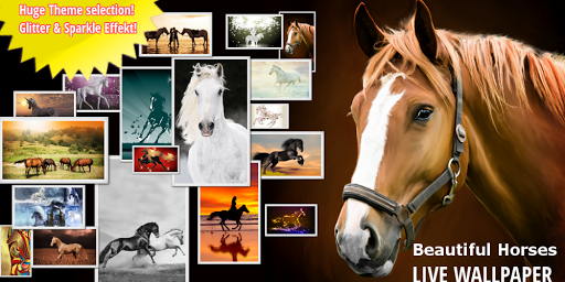 HORSES HD LIVE WALLPAPER FREE
