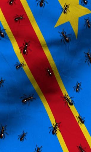 免費下載個人化APP|剛果民主共和國國旗 app開箱文|APP開箱王