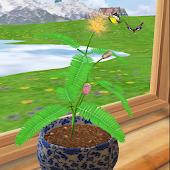 3D Mimosa Live Wallpaper
