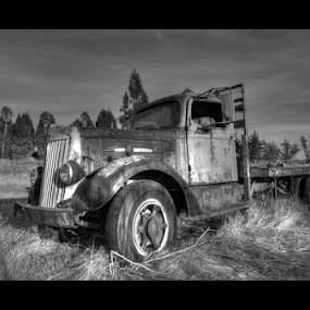 Forgotten Truck by Kevin Denton - Transportation Automobiles ( trucks, black and white, sonoma california, , land, device, transportation )