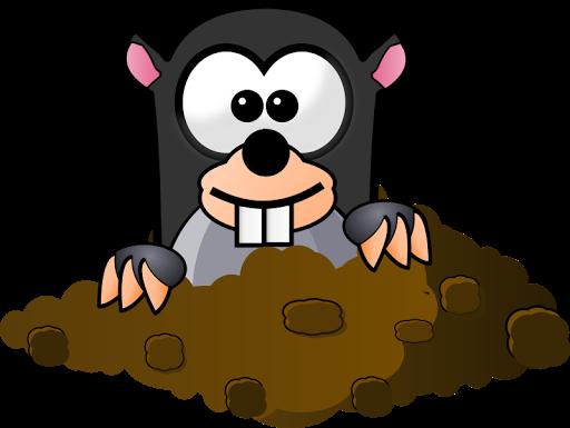 MoleMash