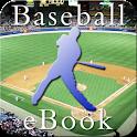 Baseball Season InstEbook logo