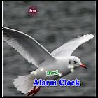 Bird Alarm icon
