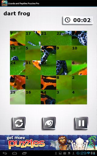 免費下載解謎APP|蜥蜴爬行動物 - 免費益智 app開箱文|APP開箱王