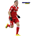 Franck Ribery widgets logo