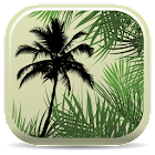 Palm ID Key icon
