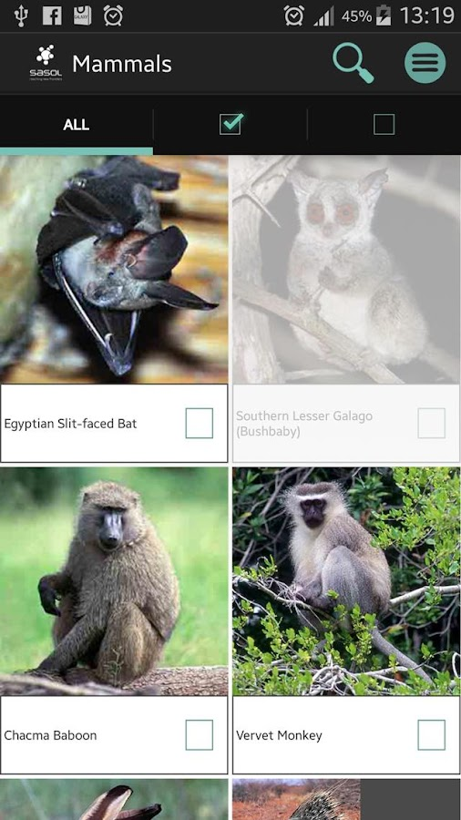 Sasol Mammals for Beginners- screenshot