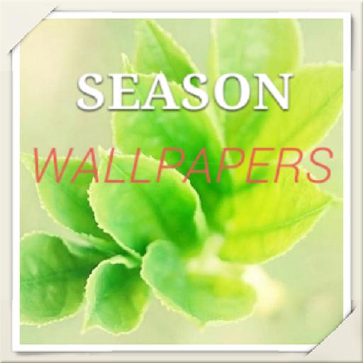 Galaxy Note 4 Season Wallpaper 工具 App LOGO-硬是要APP