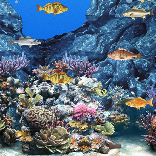 Abubu海洋的动态壁纸 LOGO-APP點子
