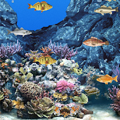 Abubu ocean live wallpaper