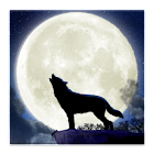 Howling Wolf Live Wallpaper icon