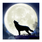 Howling Wolf Live Wallpaper