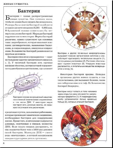 Живой мир - энциклопедия детям