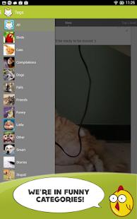 Cute Animals Photos Wallpapers screenshot