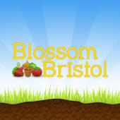Blossom Bristol
