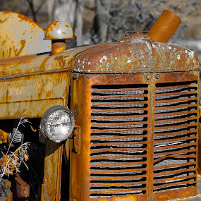 Rust by Edwin Montgomery - Transportation Other ( rusty, rust, tractor, sunday morning tractor, weathered, eyes )