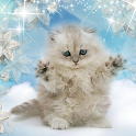 Winter Kitty Live Wallpaper icon