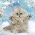 Winter Kitty Live Wallpaper icon