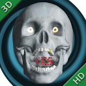 Magic Skull 3D logo