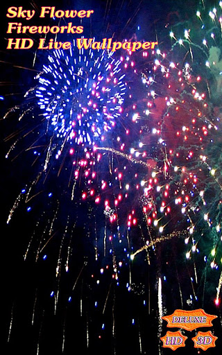 Sky Flower Fireworks HD