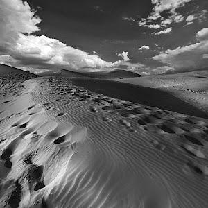 b& w desert.jpg