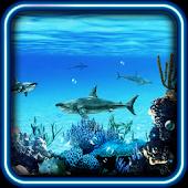 Sharks Predator live wallpaper