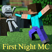 Minecraft First Night