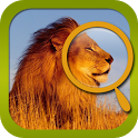 Find 3 Diffs--Safari Park icon