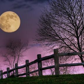 November Moon by Jim Crotty - Landscapes Starscapes ( moon, mystical, ohio, autumn, jim crotty, inn at cedar falls, lunar, hocking hills )