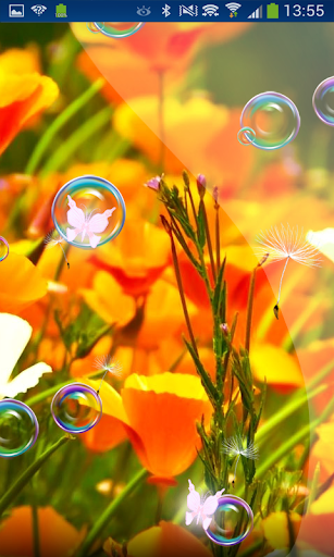 Flowers Romance n Bubble 3D
