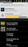 Screenshot of BluePlaylist Music Player