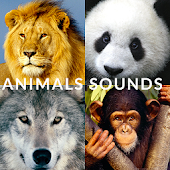 Animals friends - guess songs