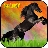Bolt - The Black Horse