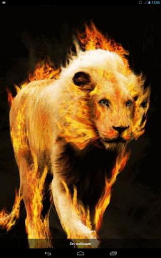 Blazing Lion Live WP