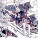 Oriental Houses Snowy logo