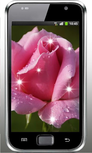 Roses Dew Drops live wallpaper
