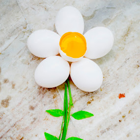 egg flower by Abhijeet Kumar - Food & Drink Ingredients ( eggs, fine art, egg, flowers, creativity, flower )