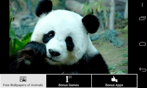 free wallpapers of animals hd screenshot thumbnail - Free Pics Of Animals
